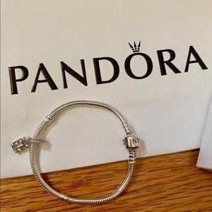 Pandora Snake Bracelet 18 Classic Luminous charm